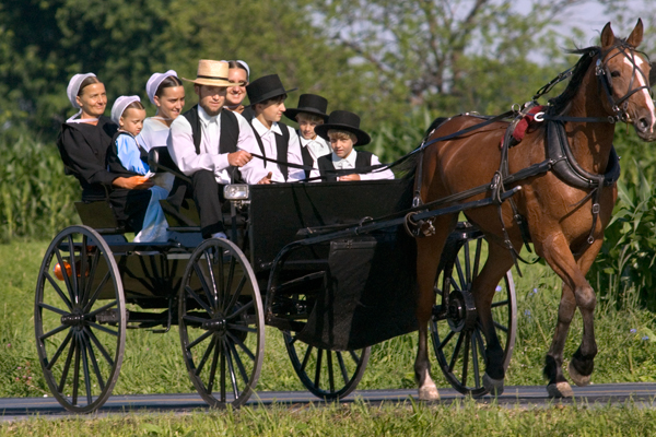 'Meeting the Amish'